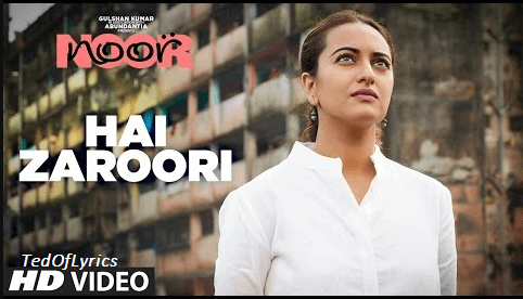 Hai-Zaroori-Lyrics-Noor
